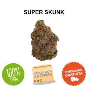 super skunk cannabis legale cbd