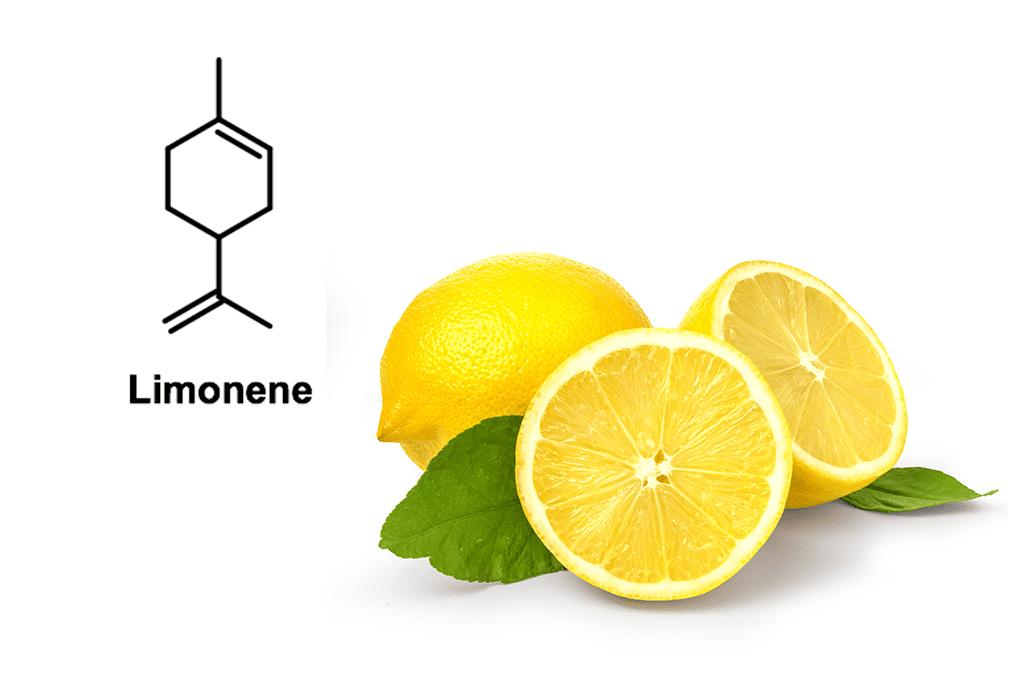 Limonene: cosa è, effetti, benefici ed utilizzi