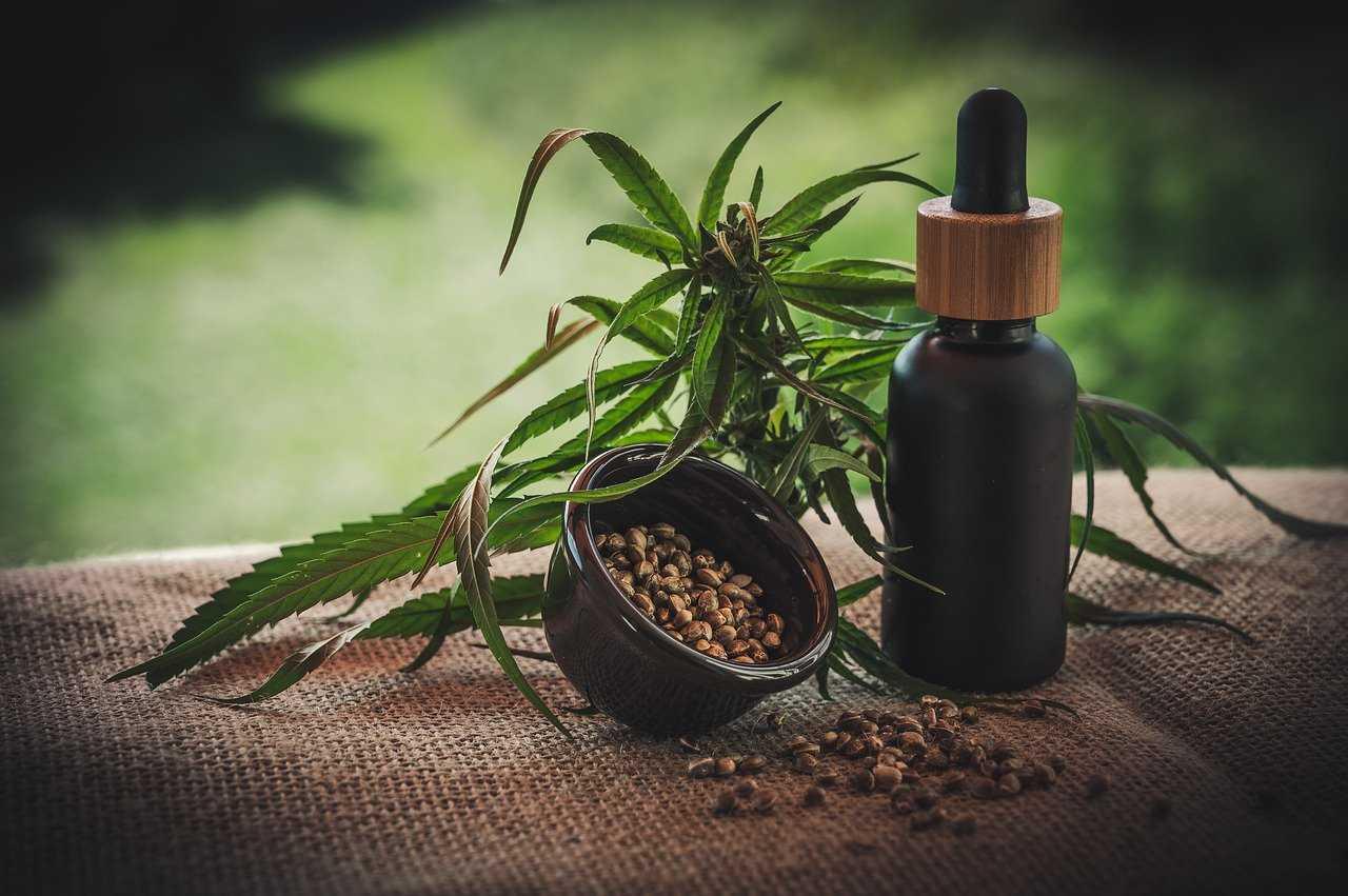 Cannabis terapeutica: benefici e proprietà