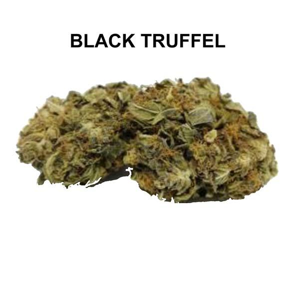 BLACK TRUFFEL