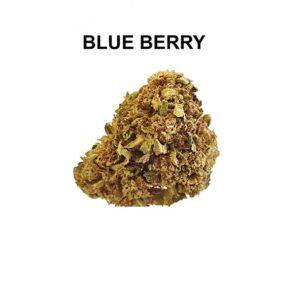 BLUE BERRY WEED LEGALE CONFEZIONI DA 1-3-5-10 GR.