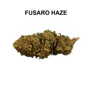 Fusaro Haze Erba Legale