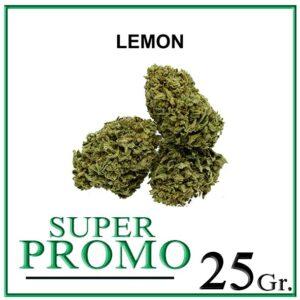 SUPER LEMON HAZE 25 Gr. – 50% OFF